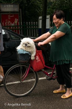 The art and fashion of biking in Nanjing.