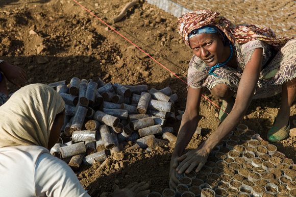 Women working in a reforestation project around Lake Tana in the North of Ethiopia